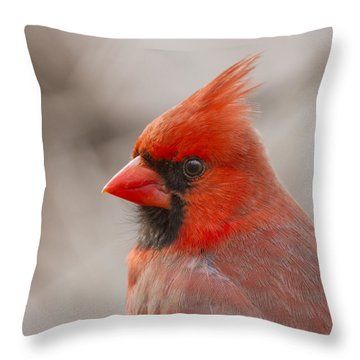 Mr Cardinal Portrait Throw Pillow