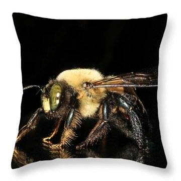 Mr. Carpenter...remodeling Service Throw Pillow