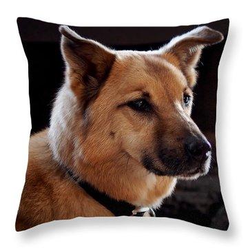 Mr. Charlie Throw Pillow