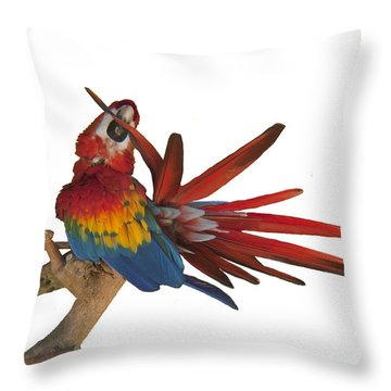 Throw Pillow featuring the photograph Mr. Clean The Scarlet Macaw by Daniel Hebard
