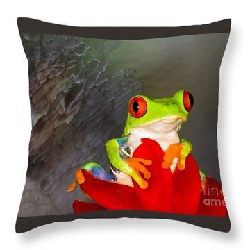 Mr. Curious Throw Pillow