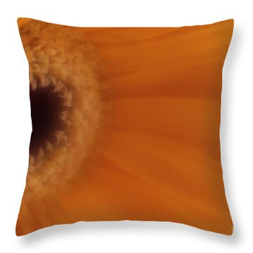 Throw Pillow featuring the photograph Mr. Golden Sun by Mary Lou Chmura