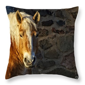 Mr. Handsome Throw Pillow