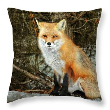 Mr. Personality Throw Pillow by Sami Martin