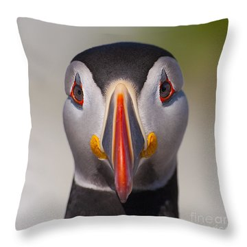Mr. Puffin.. Throw Pillow