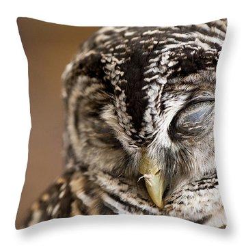 Mr Sleepyhead Throw Pillow