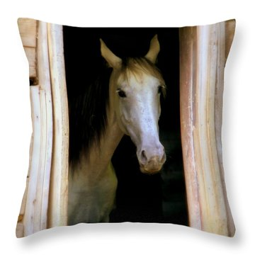 Mrs. Ed Throw Pillow by Karen Wiles