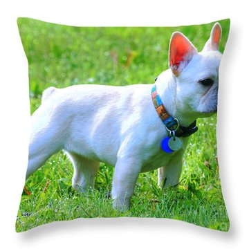 Ms. Quiggly - French Bulldog Throw Pillow