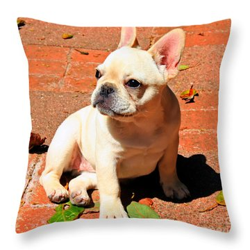 Ms. Quiggly Throw Pillow