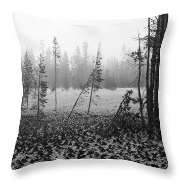 Mt Bachelor Road Throw Pillow