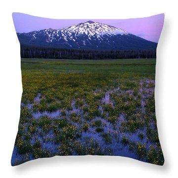 Throw Pillow featuring the photograph Mt. Bachelor Twilight by Kevin Desrosiers