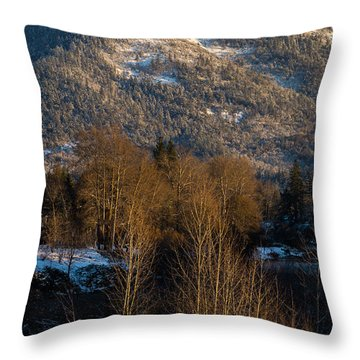 Mt Baldy Near Grants Pass Throw Pillow