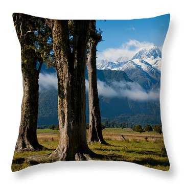 Mt Cook Through Trees Throw Pillow