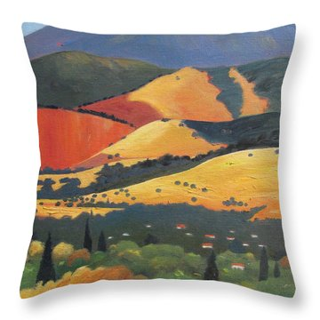 Mt. Diablo 1 Throw Pillow by Gary Coleman