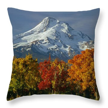 1m5117-mt. Hood In Autumn Throw Pillow