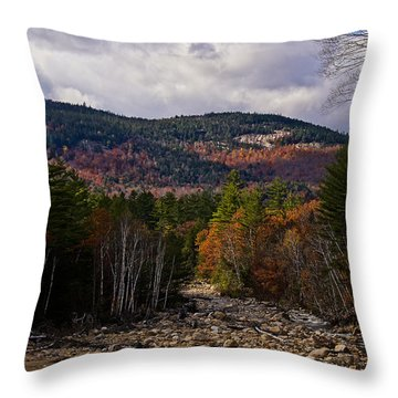 Mt. Langdon On A Sunlit Afternoon Throw Pillow