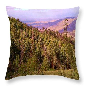 Mt. Lemmon Vista Throw Pillow