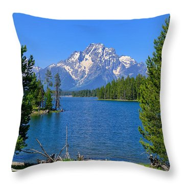 Throw Pillow featuring the photograph Mt Moran At Half Moon Bay by Greg Norrell