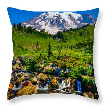 Mt. Rainier Stream Throw Pillow by Chris McKenna