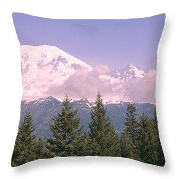 Mt Ranier Mt Ranier National Park Wa Throw Pillow