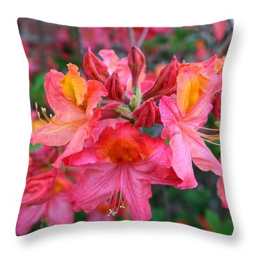 Mt St Helens Azalea Throw Pillow by Kathryn Meyer