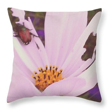 Muching On Beauty Throw Pillow