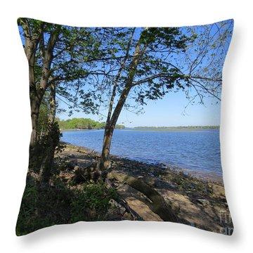 Mud Island Throw Pillow