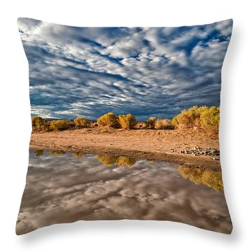 Mud Puddle Throw Pillow by Cat Connor