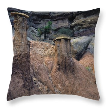 Mudcaps Throw Pillow