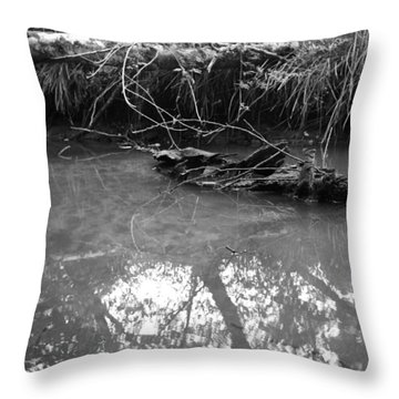 Muddy Creek Throw Pillow by Adria Trail