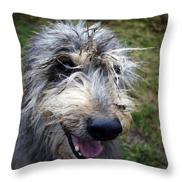 Muddy Dog Throw Pillow