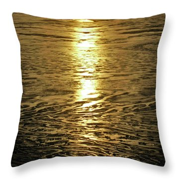 Throw Pillow featuring the photograph Muddy Reflection by Jeremy Rhoades