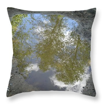 Mudpuddle Reflection Throw Pillow