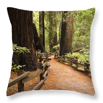 Muir Woods Trail Throw Pillow