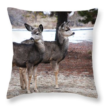Mule Deer Fawns Throw Pillow