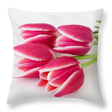 Throw Pillow featuring the photograph Multicolored Tulips by Anita Oakley
