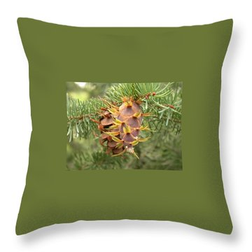 Multiple Generations Throw Pillow