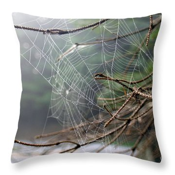 Multiple Webs - Near Throw Pillow by Kenny Glotfelty