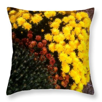 Throw Pillow featuring the photograph Mums In The Fall by Deborah Fay