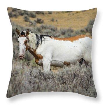 Munch Time Throw Pillow by Kathleen Scanlan