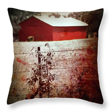 Murder In The Red Barn Throw Pillow