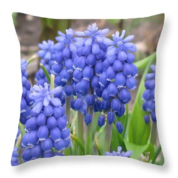 Throw Pillow featuring the photograph Muscari Up Close by Margaret Newcomb