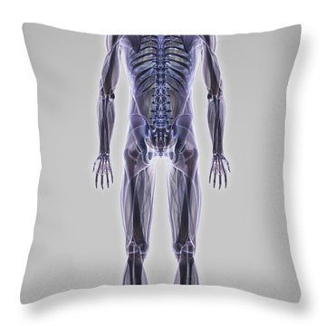 Muscle System Throw Pillow