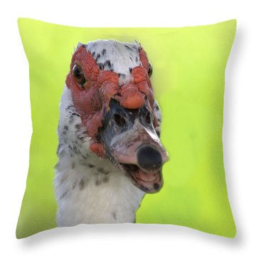 Muscovy Duck Throw Pillow