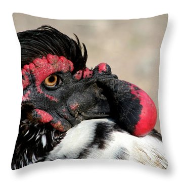 Muscovy Duck With Wattle Throw Pillow by Bob and Jan Shriner