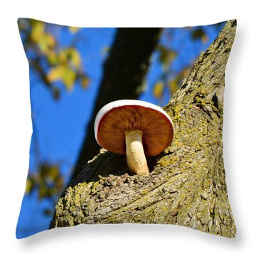 Throw Pillow featuring the photograph Mushroom In A Tree by Ally  White