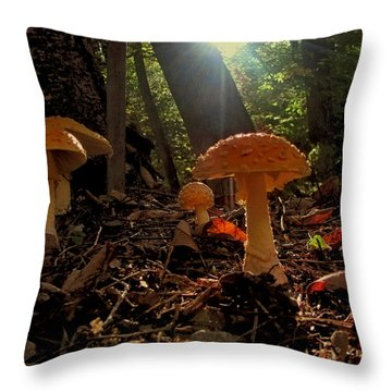 Throw Pillow featuring the photograph Mushroom Morning by GJ Blackman