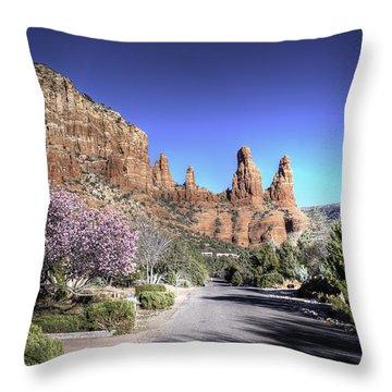 Mushroom Rock Throw Pillow