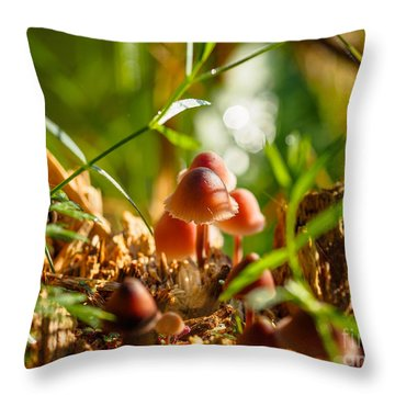 Mushrooms On A Decaying Stump Throw Pillow