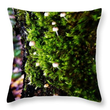 Throw Pillow featuring the photograph Mushrooms by Vanessa Palomino